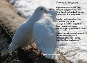 HOŞÇAKAL..